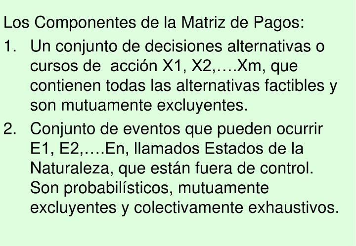 Los Componentes de la Matriz de Pagos: