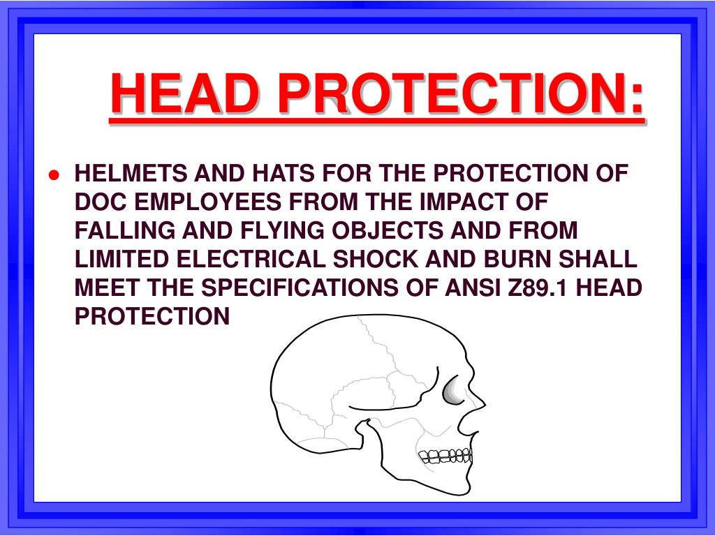 HEAD PROTECTION: