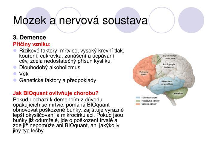 Mozek a nervová soustava