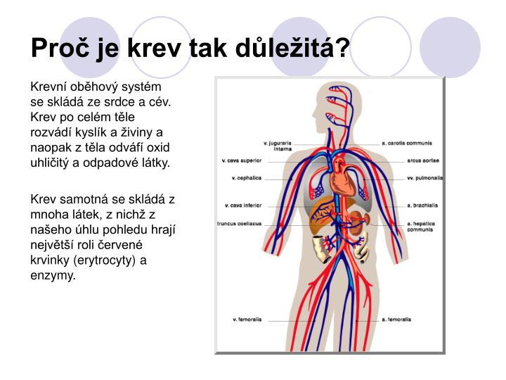 Proč je krev tak důležitá?