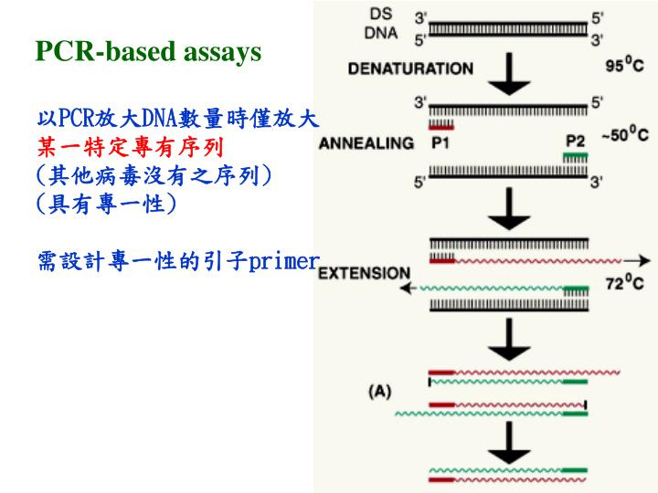 PCR-based assays