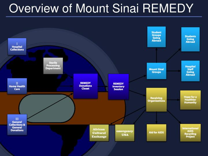 Overview of Mount Sinai REMEDY