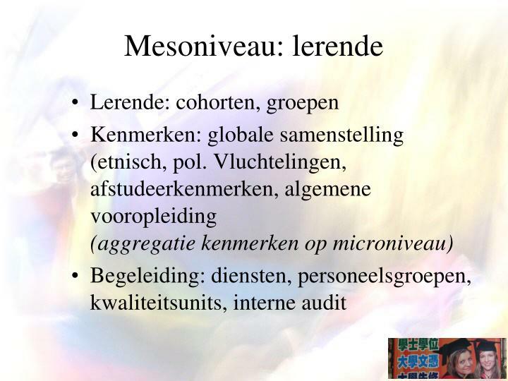 Mesoniveau: lerende