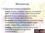mesoniveau3