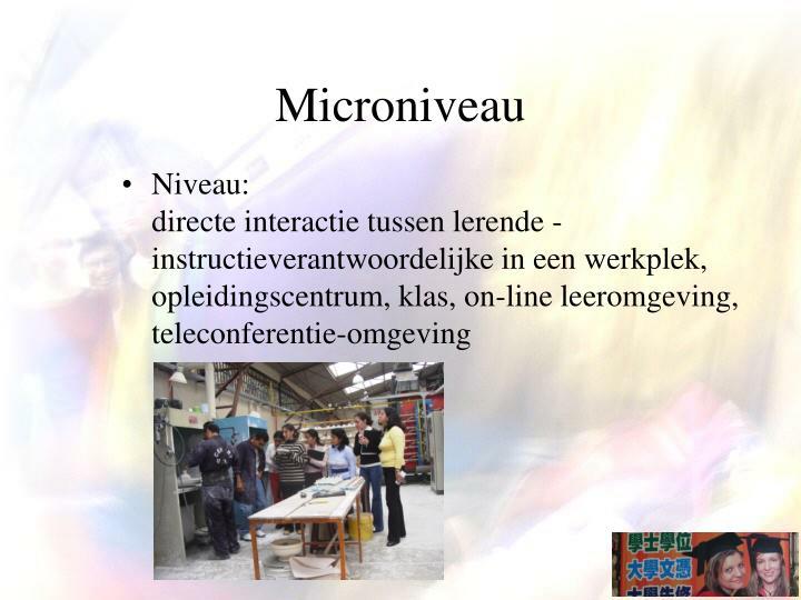 Microniveau