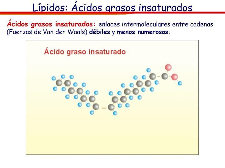Lípidos: Ácidos grasos insaturados