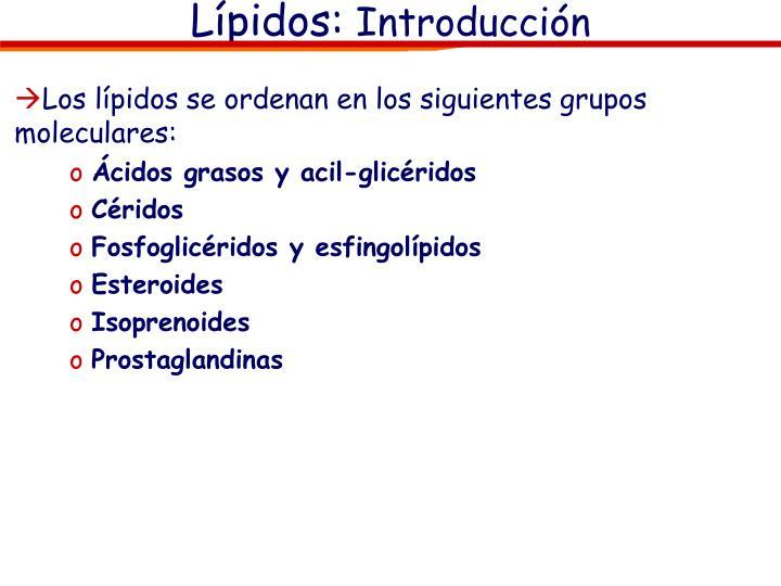 Los lípidos se ordenan en los siguientes grupos moleculares: