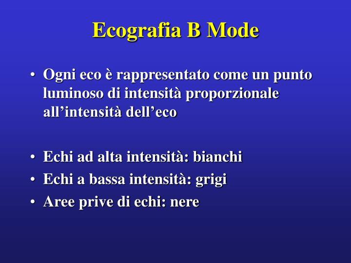 Ecografia B Mode
