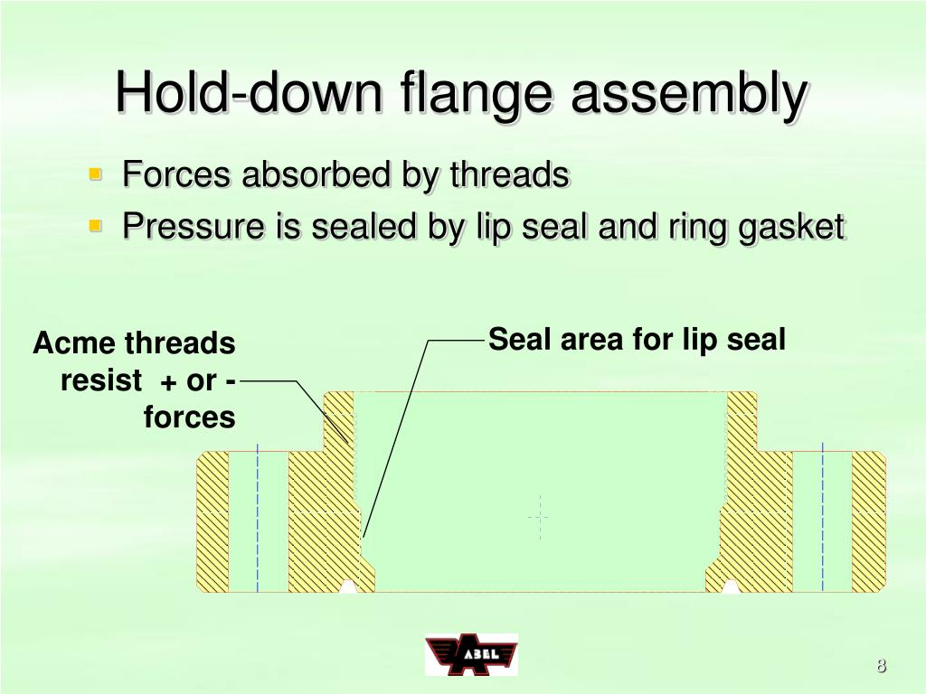Hold-down flange assembly