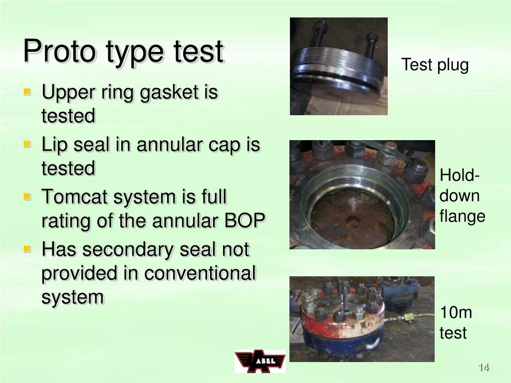 Proto type test