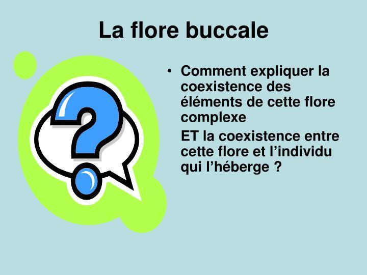 Comment expliquer la coexistence des éléments de cette flore complexe