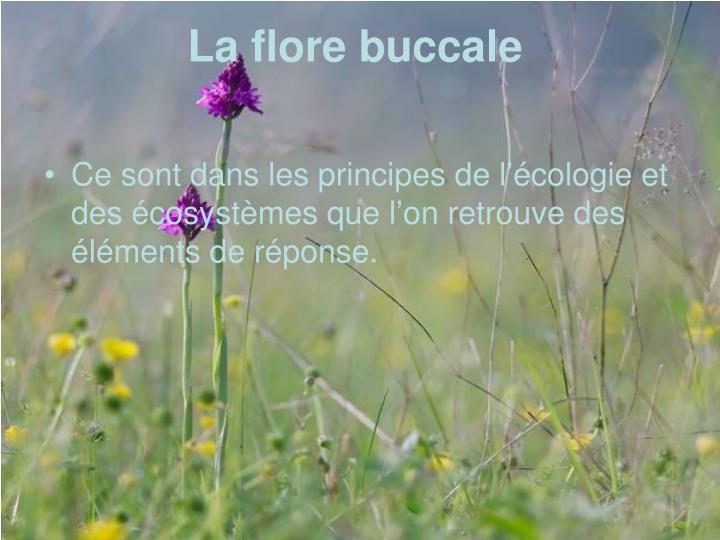 La flore buccale