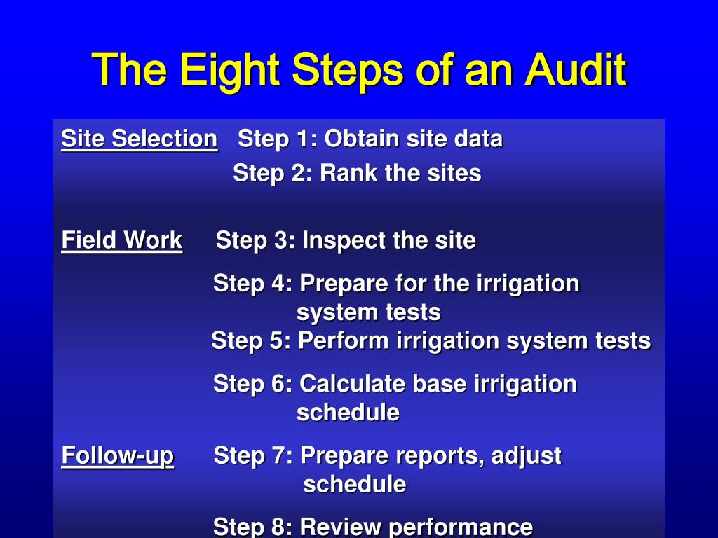 The Eight Steps of an Audit