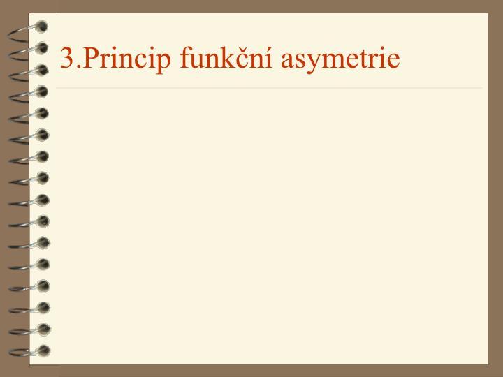 3.Princip funkční asymetrie