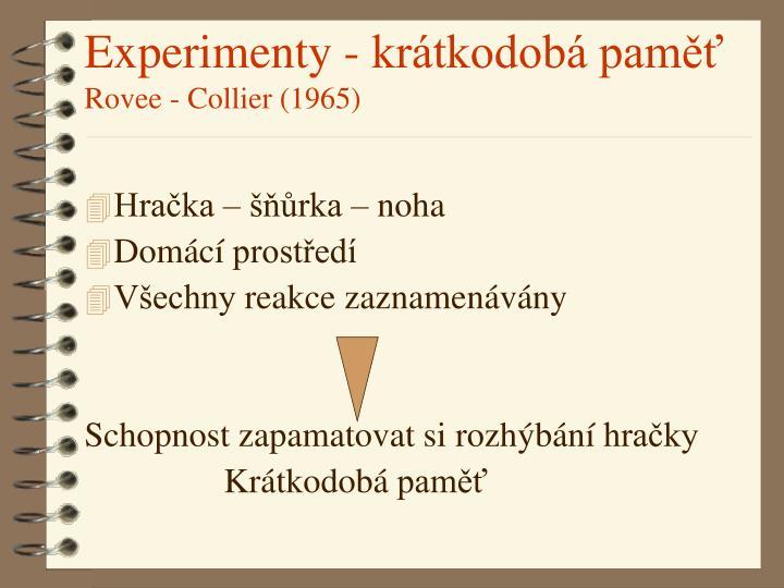 Experimenty - krátkodobá paměť