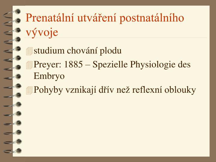 Prenatální utváření postnatálního vývoje