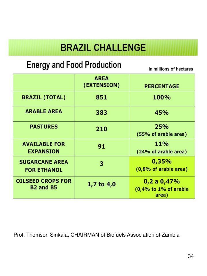 Prof. Thomson Sinkala, CHAIRMAN of Biofuels Association of Zambia