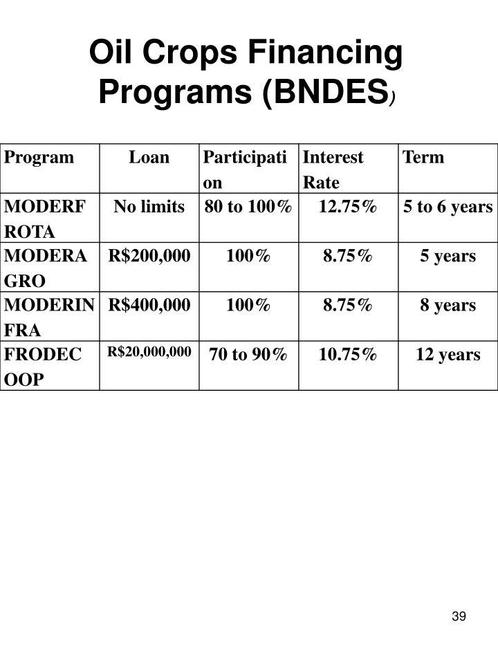 Oil Crops Financing Programs (BNDES