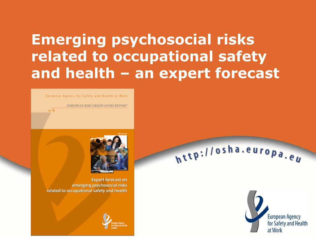 Emerging psychosocial risks related to occupational safety and health – an expert forecast