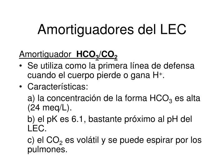 Amortiguadores del LEC