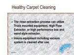 healthy carpet cleaning24