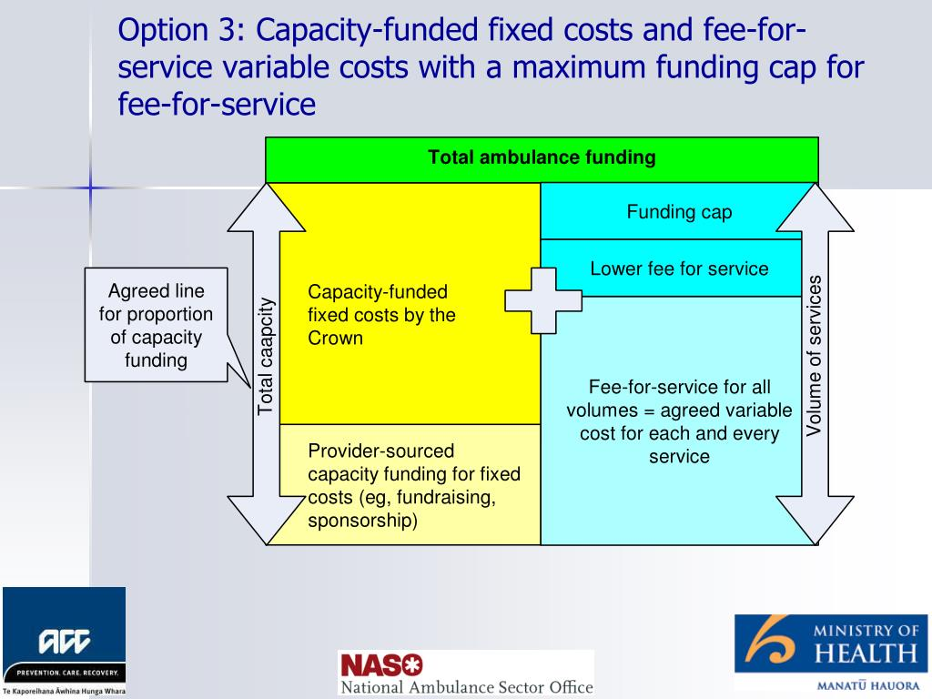 Option 3: Capacity-funded fixed costs and fee-for-service variable costs with a maximum funding cap for fee-for-service