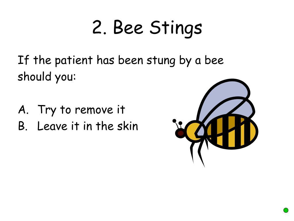 2. Bee Stings