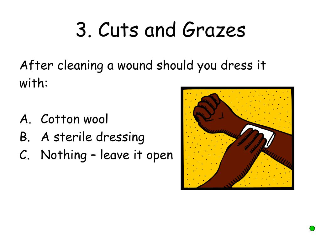 3. Cuts and Grazes