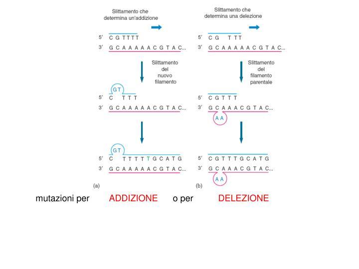 mutazioni per