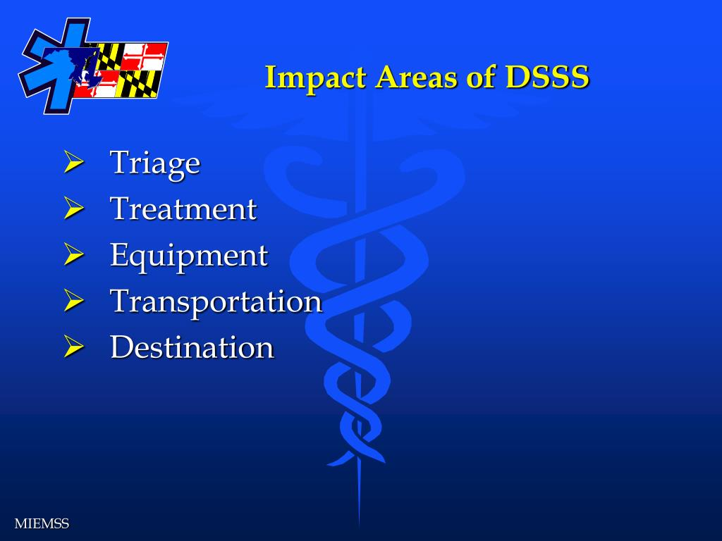 Impact Areas of DSSS