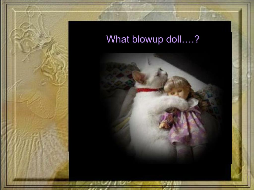 What blowup doll….?