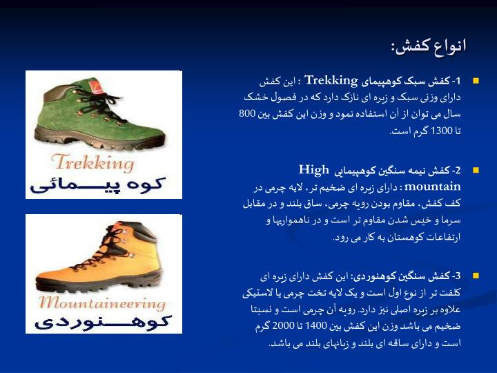 انواع کفش:
