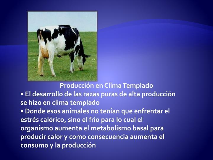 Producción en Clima Templado