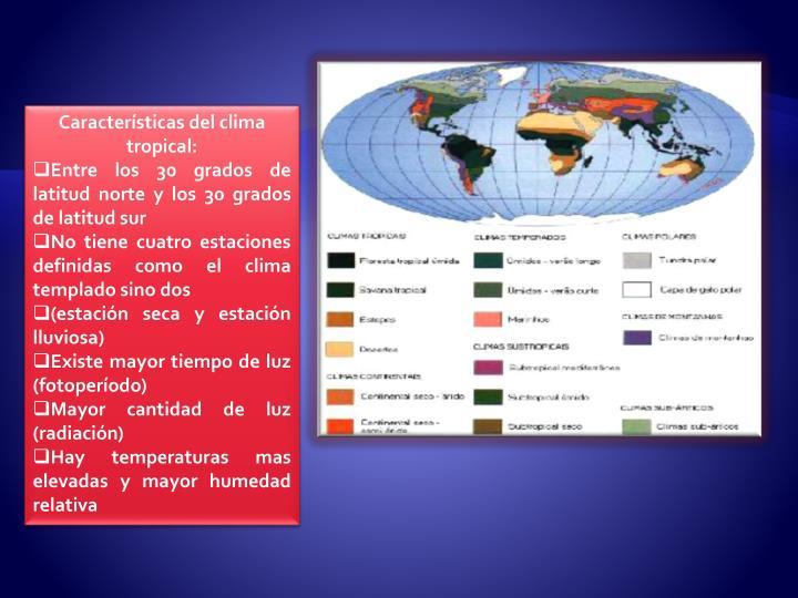 Características del clima tropical: