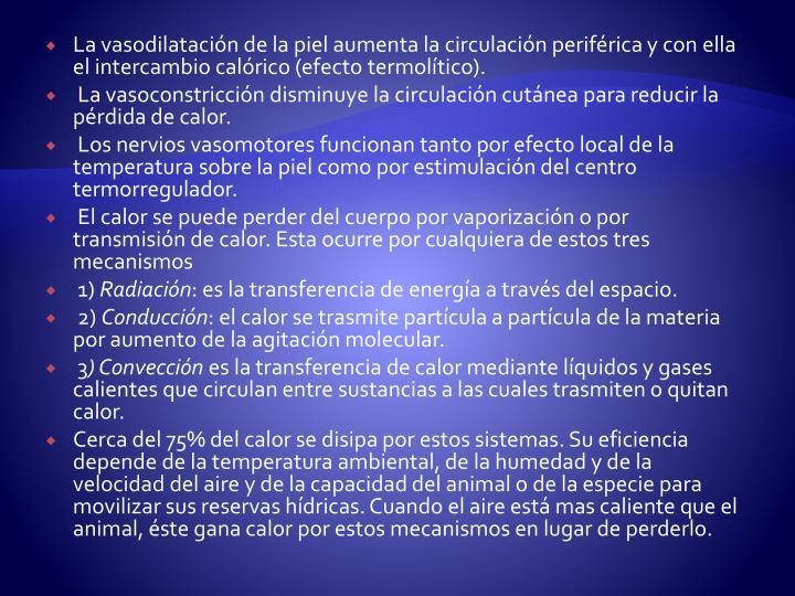 La vasodilatación de la piel aumenta la circulación periférica y con ella el intercambio calórico (efecto