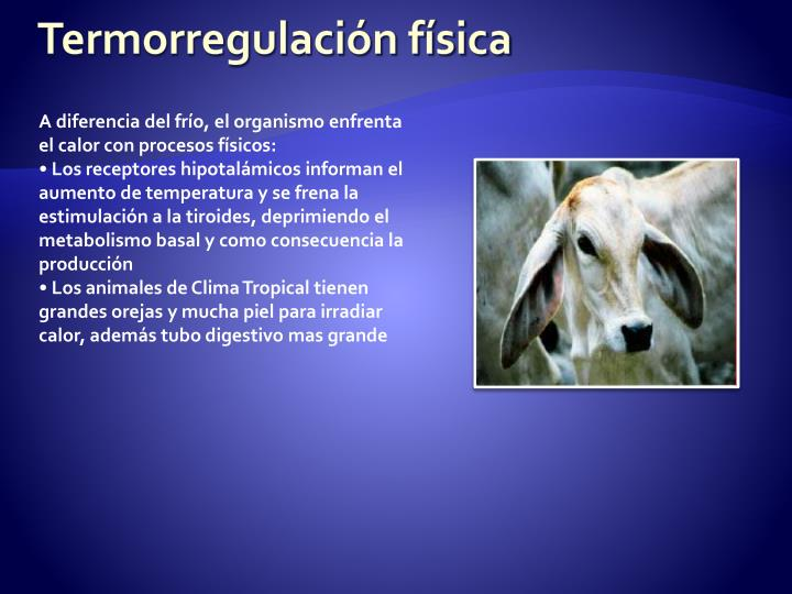 Termorregulación física