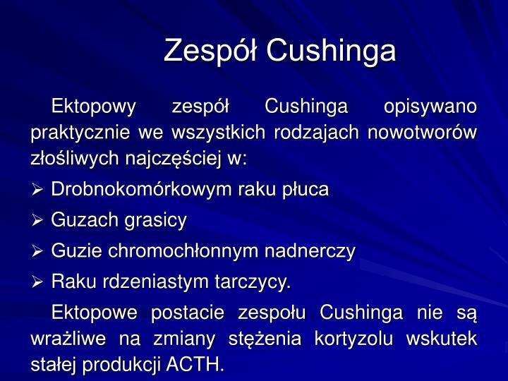 Zesp Cushinga