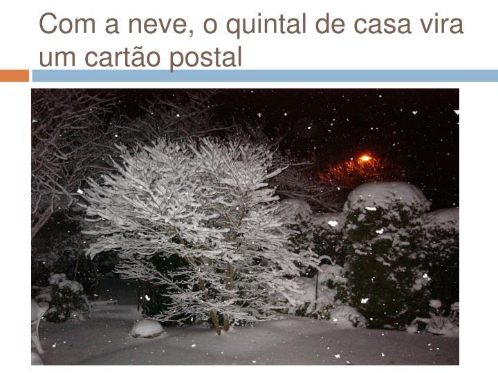 Com a neve, o quintal de casa vira um cartão postal