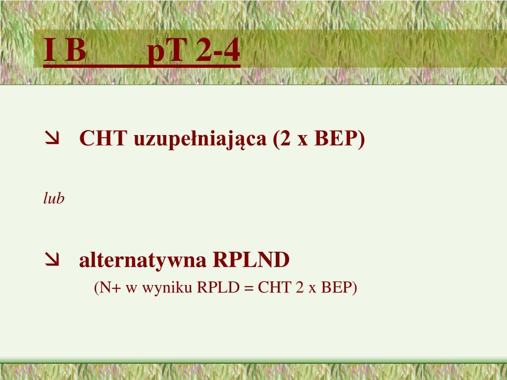I B       pT 2-4