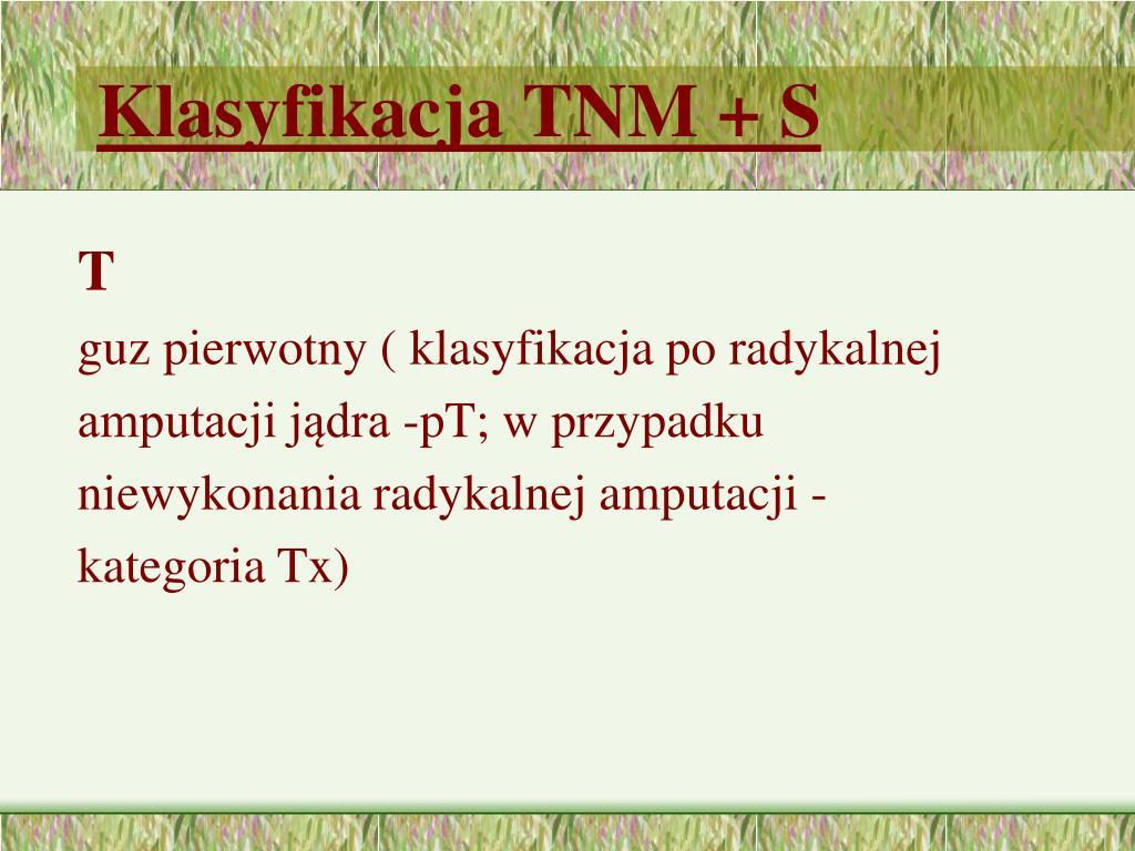 Klasyfikacja TNM + S