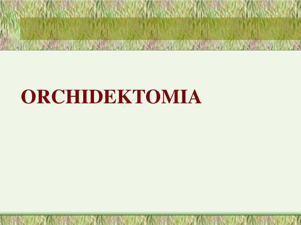 ORCHIDEKTOMIA
