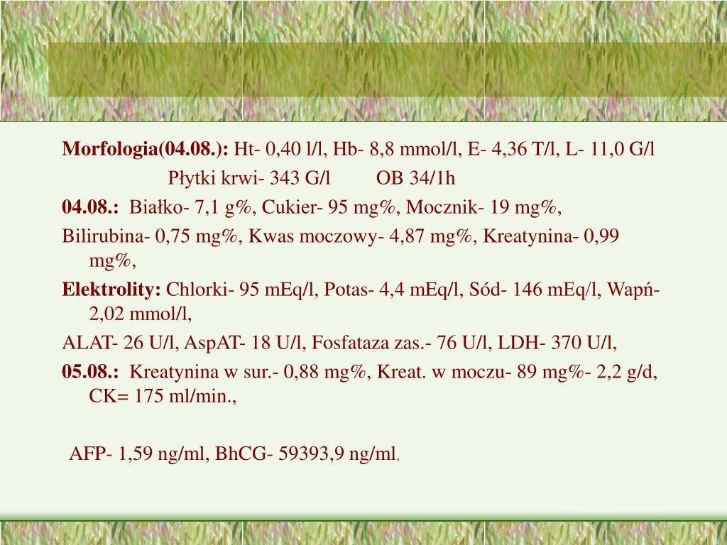 Morfologia(04.08.):
