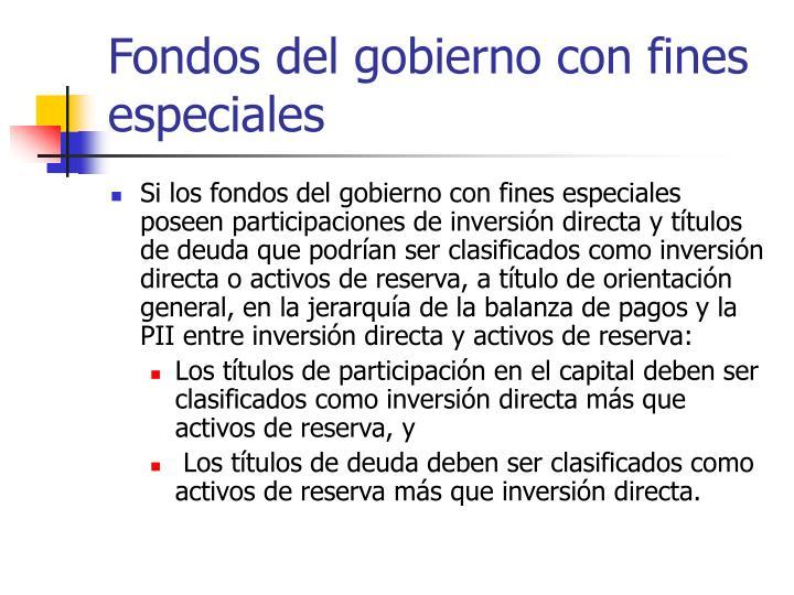 Fondos del gobierno con fines especiales