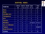 barthel index1