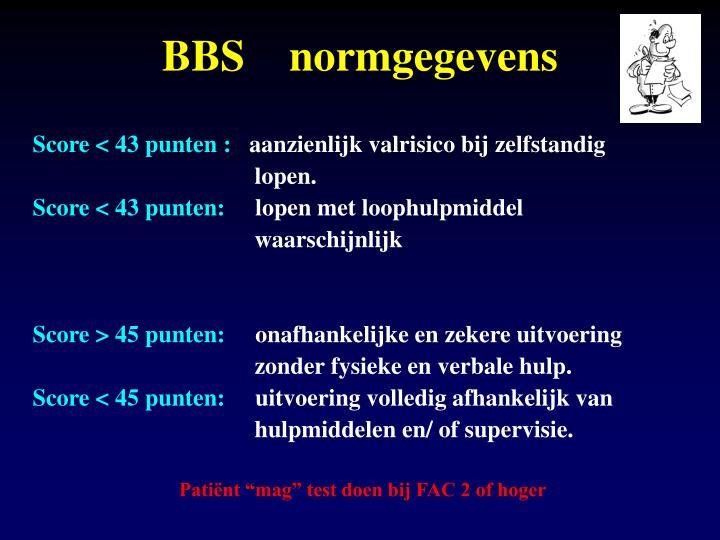 BBS    normgegevens