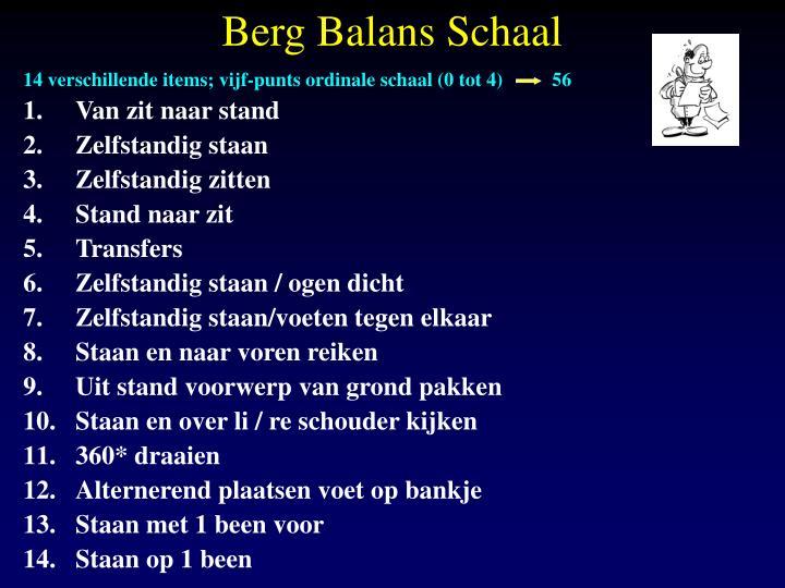 Berg Balans Schaal
