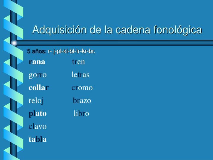 Adquisición de la cadena fonológica