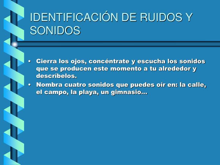 IDENTIFICACIÓN DE RUIDOS Y SONIDOS