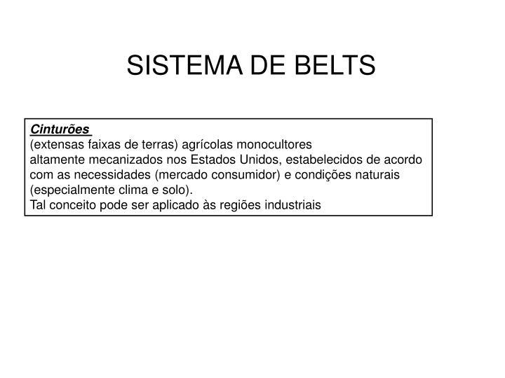 SISTEMA DE BELTS