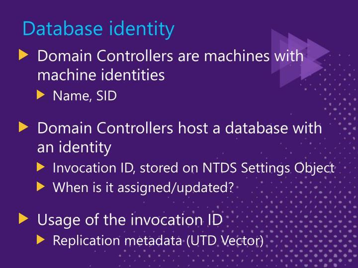 Database identity